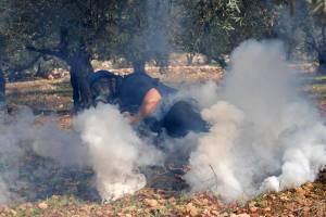 Zionist Occupation  use tear gas
