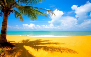 6931895-yellow-sand-beach